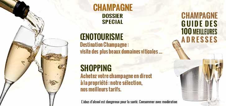 champagne-oenotourisme-visite-de-beaux-domaines-viticoles