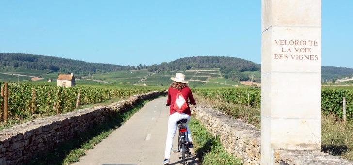 cote-d-or-tourisme-a-dijon-decouverte-de-campagne-dorienne