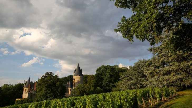 chateau-de-tracy-appartient-a-famille-d-estutt-d-assay-depuis-1396