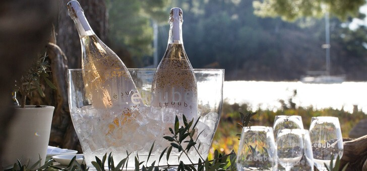 delectation-avec-vins-du-chateau-de-leoube