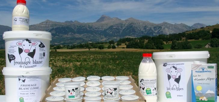 cooperative-laitiere-des-alpes-du-sud-a-eyglier-commercialisation-de-lait