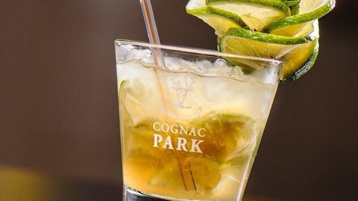 distillerie-tessendier-verre-de-cognac-park