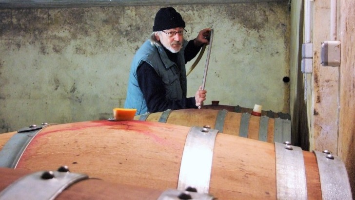 domaine-de-angele-des-vins-elabores-dans-respect-de-tradition
