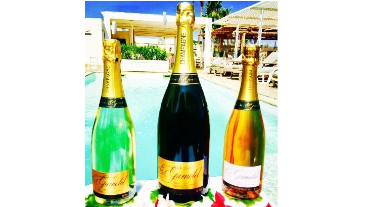 champagne-c-garnotel-a-rilly-montagne-des-cuvees-elegantes-avec-une-grande-fraicheur
