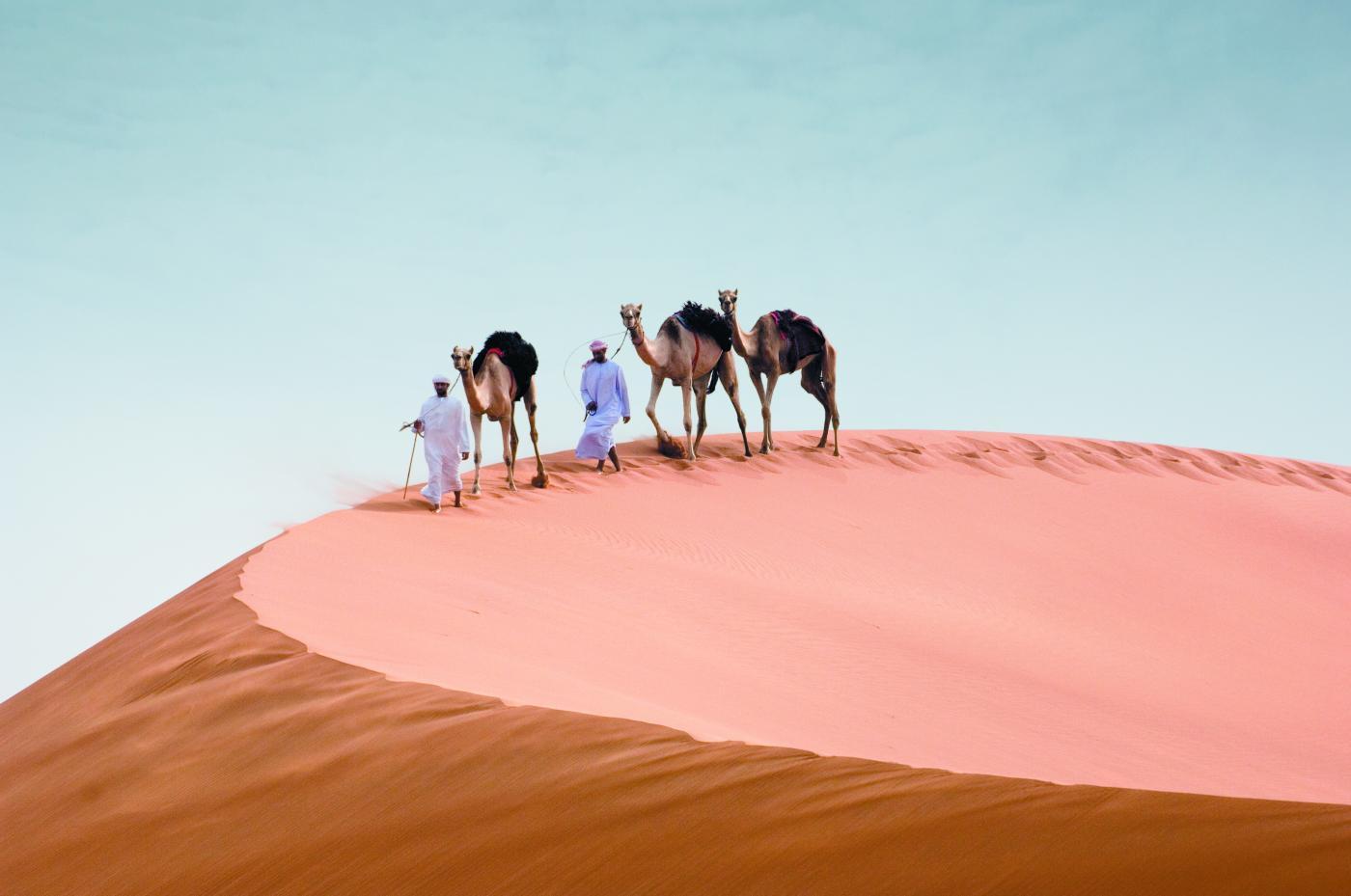 voyage-de-legende-balade-aventure-chameau-dans-desert-d-abu-dhabi