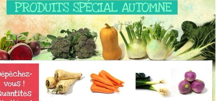 ferme-benoist-a-mezieres-drouais-une-grande-variete-de-choix-fruits-et-legumes-de-saison