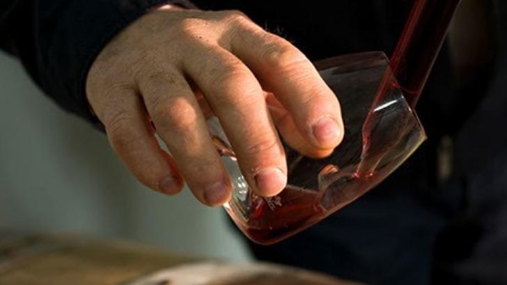 champagne-brisson-lahaye-un-vigneron-passionne-plongera-dans-univers-du-champagne