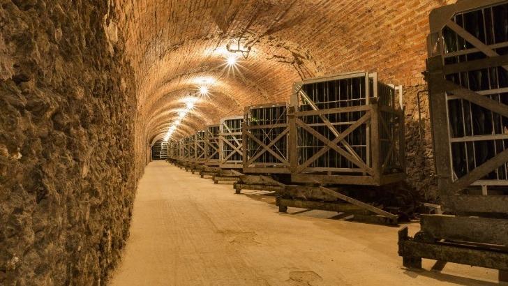 champagne-charles-ellner-a-epernay-2-kilometres-de-galerie