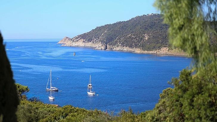 seanergies-oceanes-votre-partenaire-pour-organisation-de-vos-evenements-a-bord-d-un-bateau