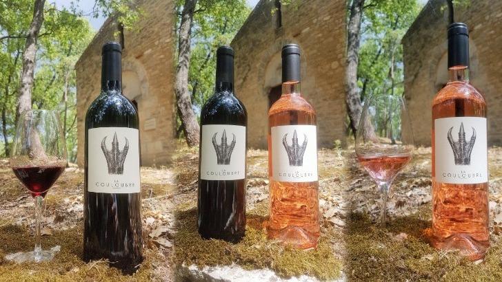 domaine-de-angele-des-vins-ne-laissent-pas-indifferents