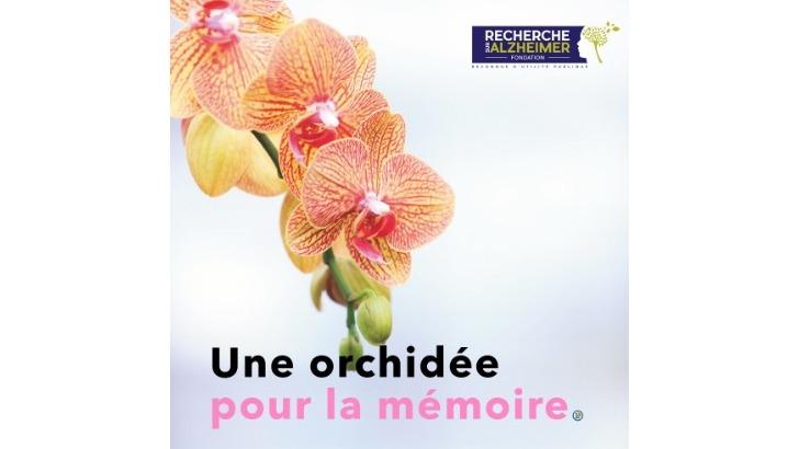 une-orchidee-pour-memoire