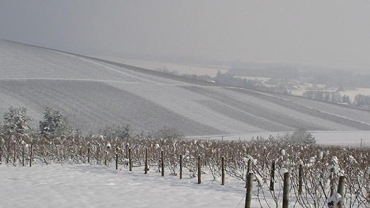champagne-moyat-jaury-guilbaud-par-temps-d-hiver