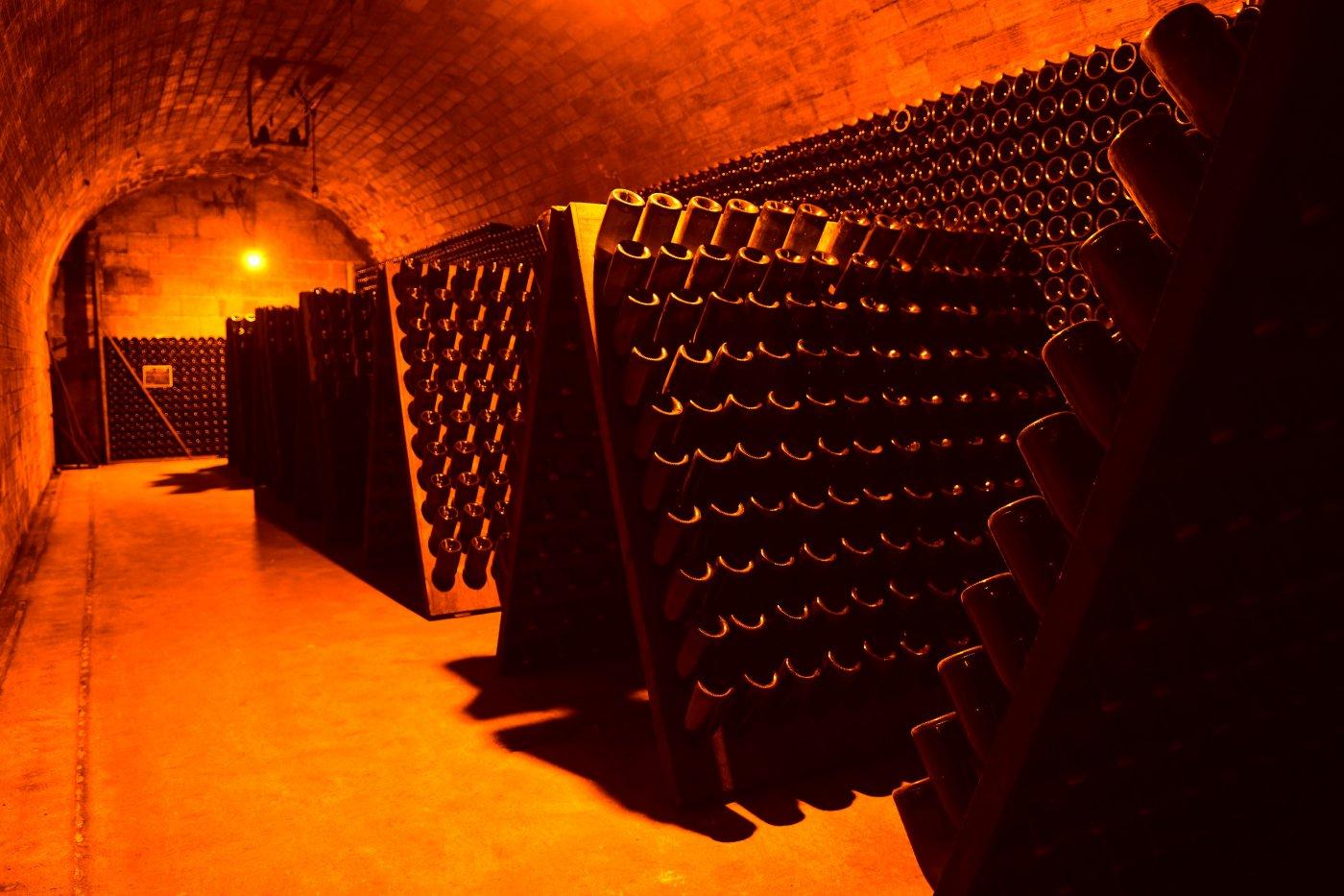 champagne-michel-fagot-a-rilly-montagne-cave-a-vins-presque-un-sanctuaire