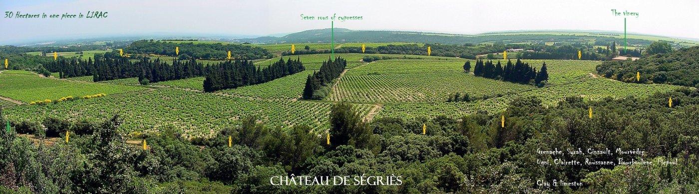 chateau-de-segries-58-hectares-de-vignobles