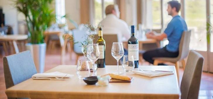 balades-chez-vignerons-de-france-avec-oenotourisme-com-une-plate-forme-passionnement-vin
