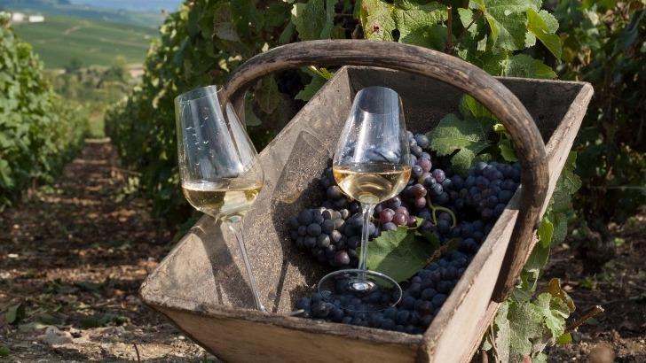 champagne-brisson-lahaye-digne-de-vos-plus-beaux-moments