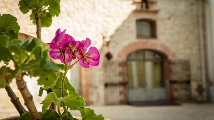 chateau-montana-c-est-aussi-un-voyage-sensoriel-vue-nez-et-papilles-trouvent-bonheur