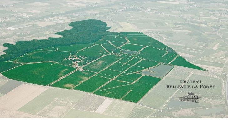 chateau-bellevue-foret-est-plus-grand-domaine-viticole-de-appellation