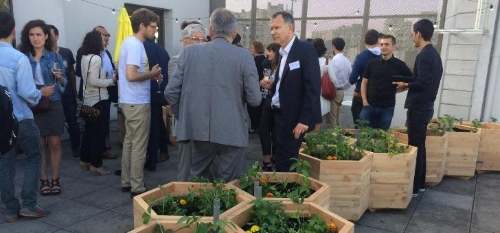 cueillette-urbaine-toutes-entreprises-peuvent-creer-ferme-urbaine