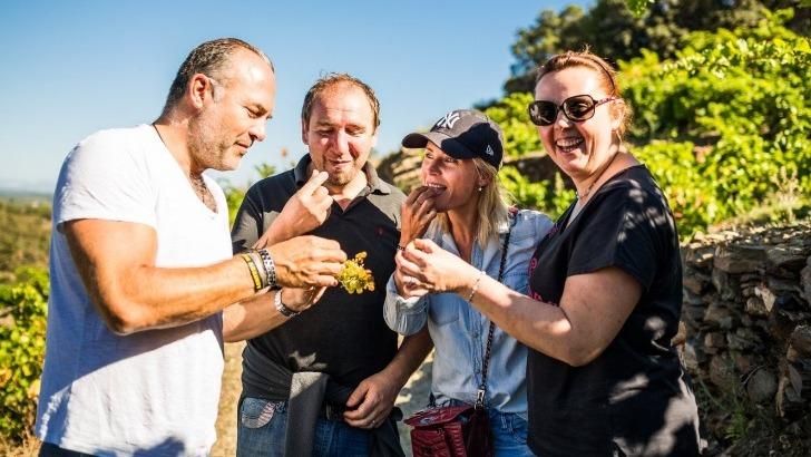 domaine-saint-thomas-fait-un-plaisir-d-expliquer-a-ses-visiteurs-tout-processus-de-fabrication-de-vin