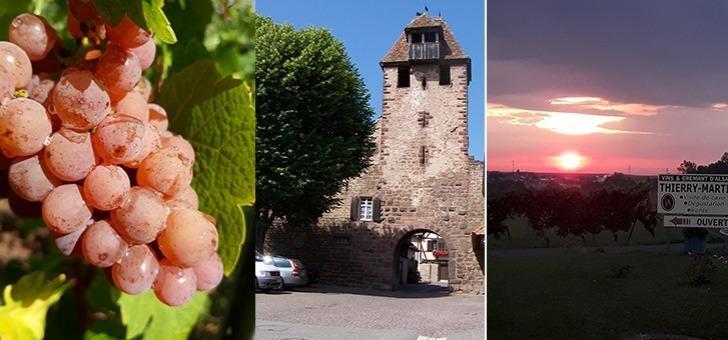 wangen-cite-medievale-route-vins-alsace