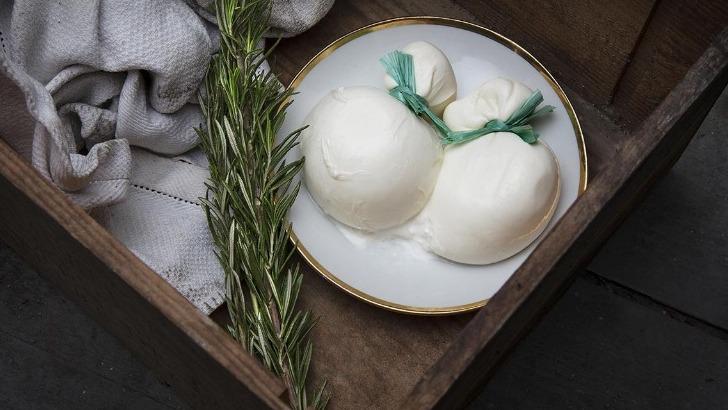 restaurant-marjolaine-a-geneve-un-savoir-faire-culinaire-authentique