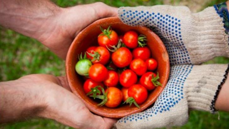 care-eat-a-saint-etienne-un-label-pour-soutenir-commerces-de-proximite-engages-dans-lutte-anti-gaspillage-alimentaire