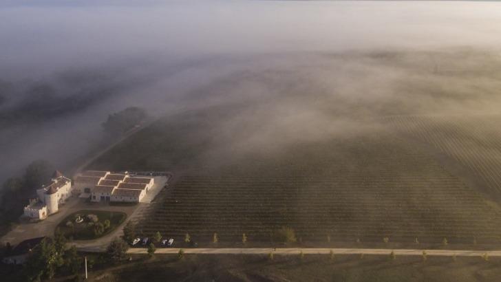 vue-panoramique-sur-ensemble-du-domaine-du-chateau-roberterie