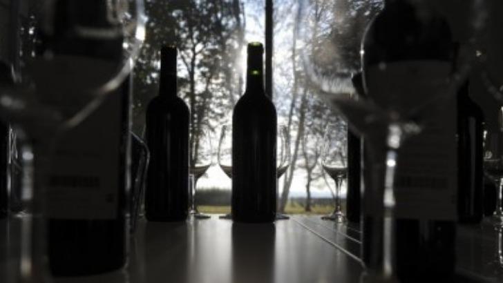 vignoble-chatonnet-des-vins-laissent-exhaler-de-seduisants-aromes-au-nez-et-longueur-bouche-laisse-des-souvenirs-de-bonheur