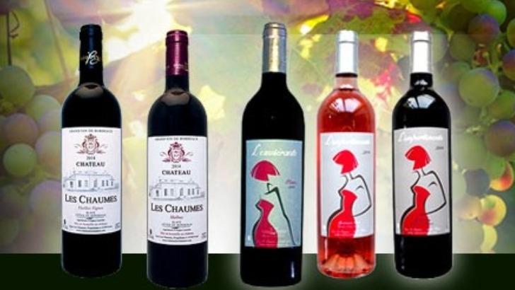 vins-alcools-domaine-chateau-les-chaumes-a-fours