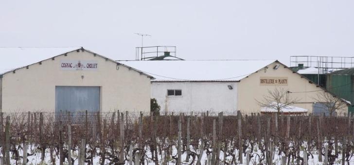 distillerie-sous-neige