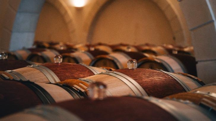 vins-alcools-domaine-vignobles-chatonnet-a-neac
