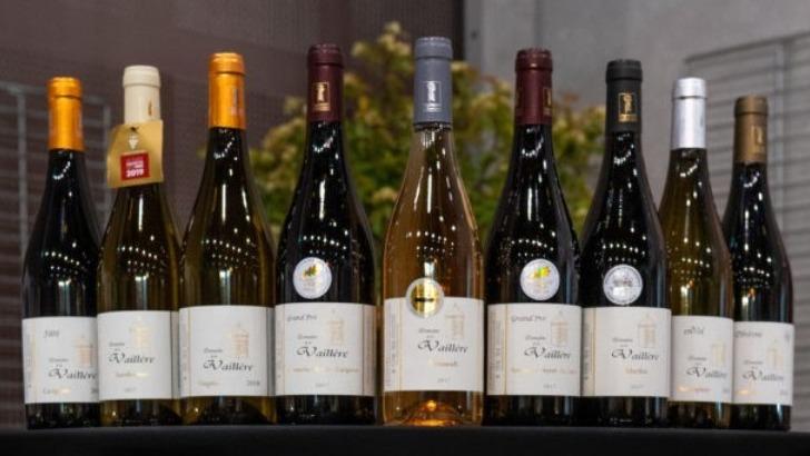 vins-alcools-domaine-domaine-de-la-vaillere-a-saint-jean-de-serres