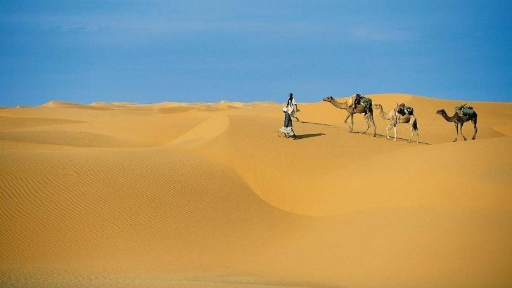 detours-mauritanie-a-atar-une-caravane-de-chameaux-dans-desert-d-adrar