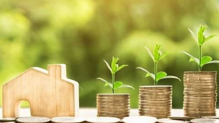 e-tumba-innovation-technologique-au-service-de-agronomie-des-pays-developpement