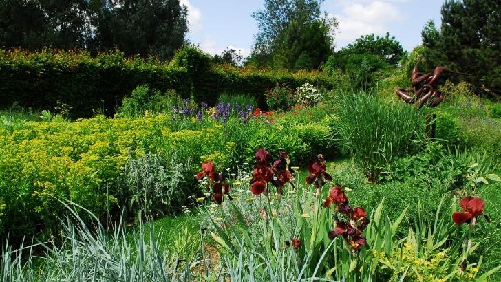 jardin-de-presle-est-fruit-d-un-couple-de-pepinieristes-passionnes-de-saules-de-roses-de-plantes-alpines-de-plantes-vivaces-sauvages-et-plus-largement-d-arbustes-adaptes-aux-terrains-calcaires-fait-un-cas-unique-france-mais-dedie-a-des-millions-de-jardiniers-francais-h-guillaume-coll-cdt-marne