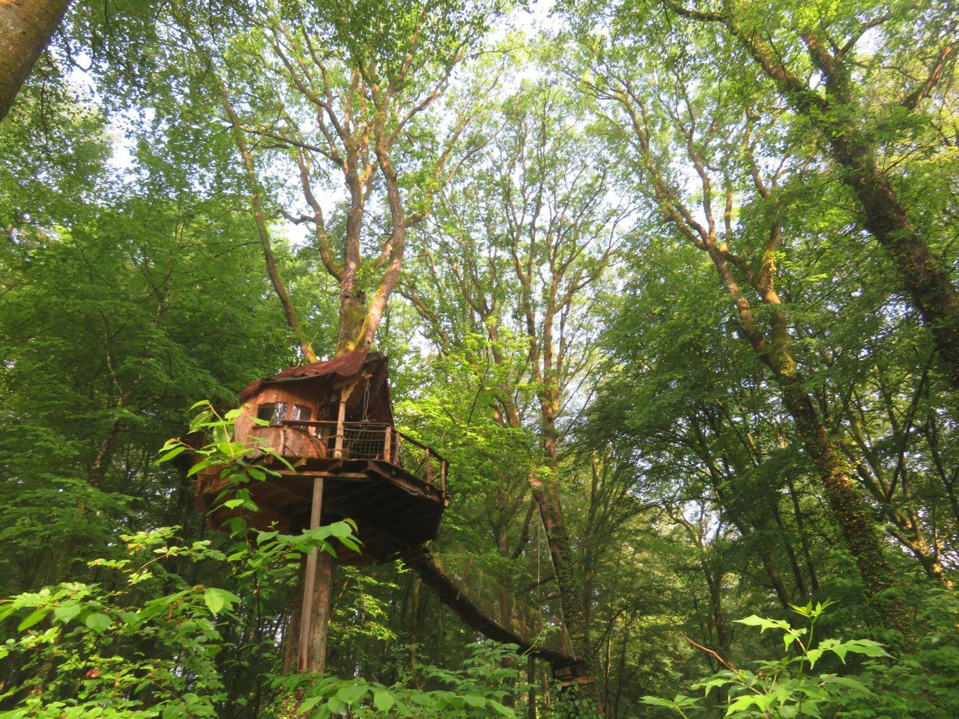 insolite-travel-propose-des-experiences-inedites-comme-dormir-dans-des-cabanes-perchees-dans-arbres