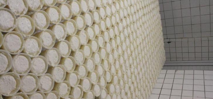 fromagerie-de-milly-a-nerondes-fabrication-de-fromage-de-chevre