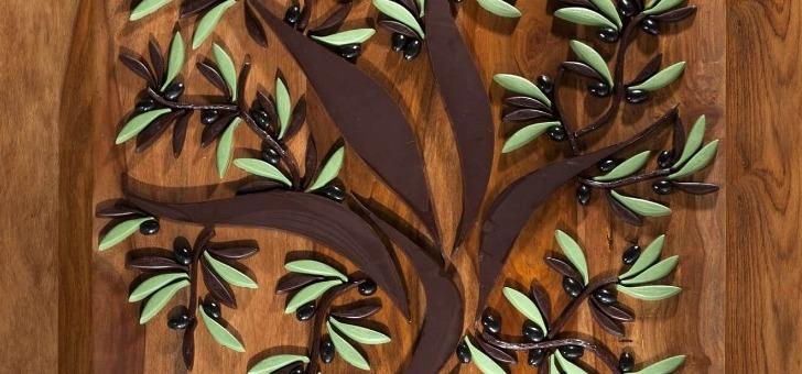 l-olivier-embleme-de-la-marque-l-esperantine-de-marseille