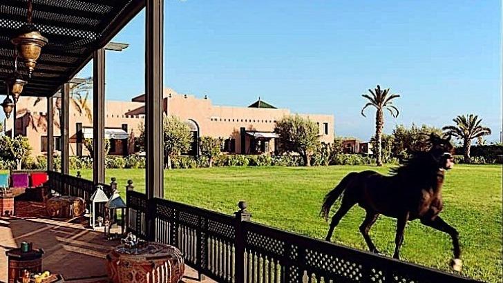 restaurant-assyl-au-selman-hotel-marrakech