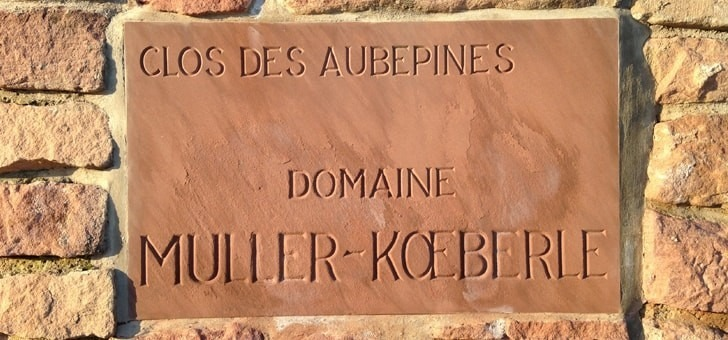 domaine-muller-koeberle