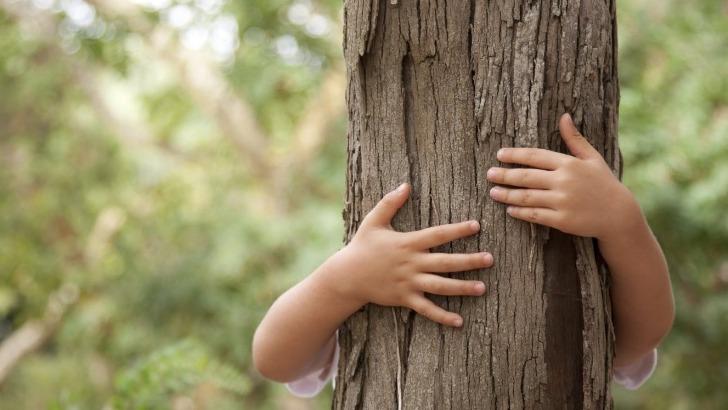 ecotree-un-patrimoine-vert-comme-heritage-ecologique-pour-generations-futures