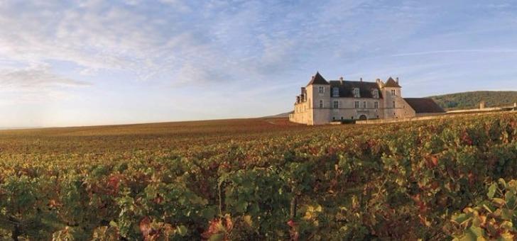 paysage-typique-de-bourgogne-franche-comte