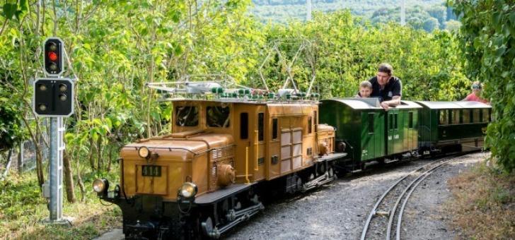parc-compte-19-locomotives-10-a-vapeur-et-9-electriques