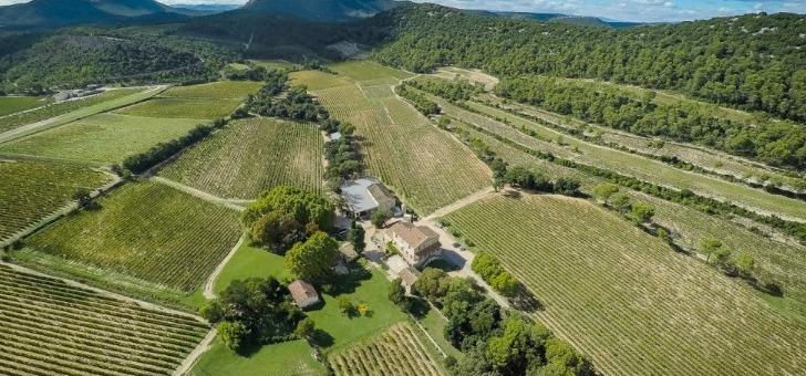 chateau-roque-a-fontanes-une-mosaique-de-parcelles-de-vignes-organisees-terrasses
