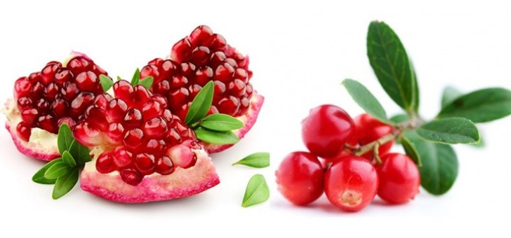 colibri-a-hay-roses-producteur-distributeur-de-jus-de-fruits-bio-depuis-2003