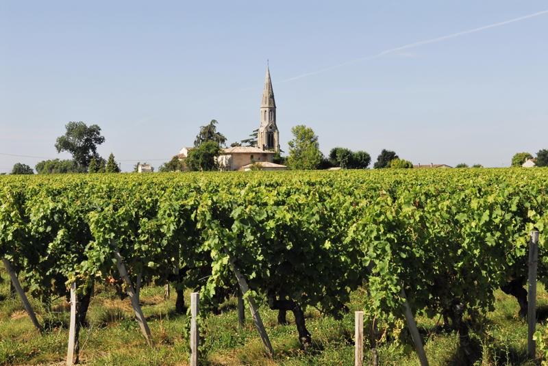 chateau-croix-saint-andre-un-domaine-etabli-sur-terrasse-neac-pomerol-saint-emilion