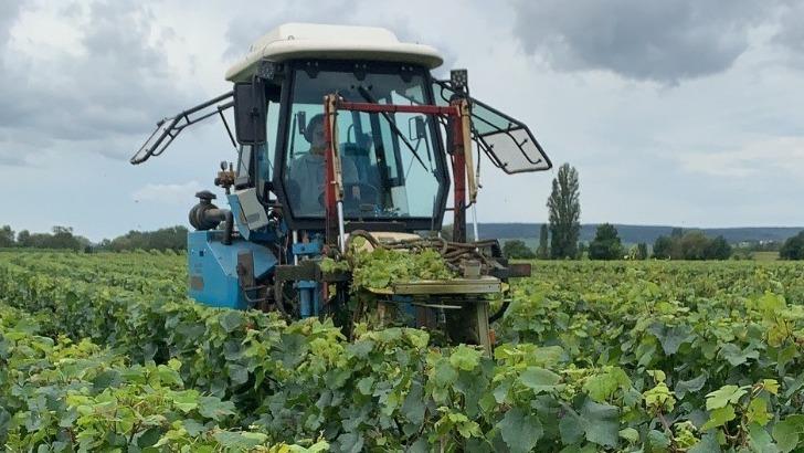 travail-dans-les-vignes-avec-un-tracteur