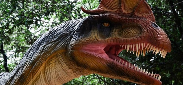 dino-park-a-saint-hilaire-de-riez-parc-d-attraction