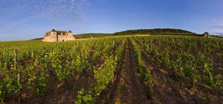 chateau-du-clos-de-vougeot-cote-d-or-tourisme